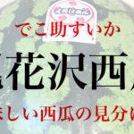 尾花沢西瓜(でこ助すいか)驚愕の大きさ・美味しいスイカとは?