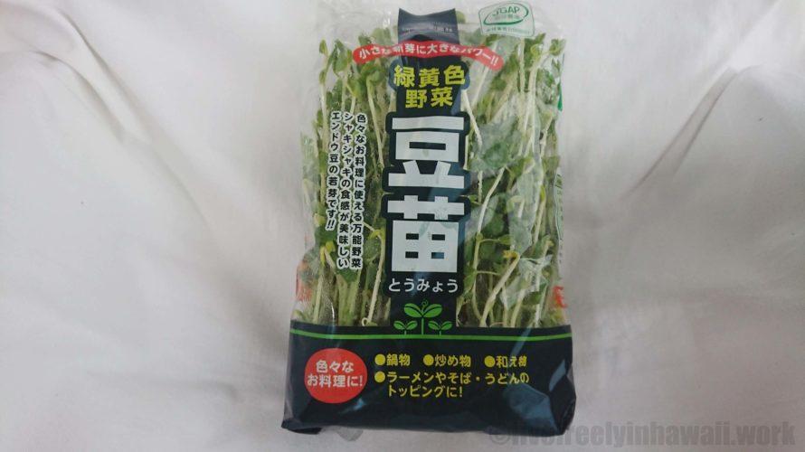 豆苗(とうみょう)何日で再収穫できる?再生栽培は何回まで?