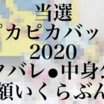 当選!ピカピカバッグ2020 ポケモンセンター福袋の中身公開