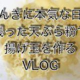 VLOG 天ぷら粉が残ったら、ひたすら揚げ玉を作ろう